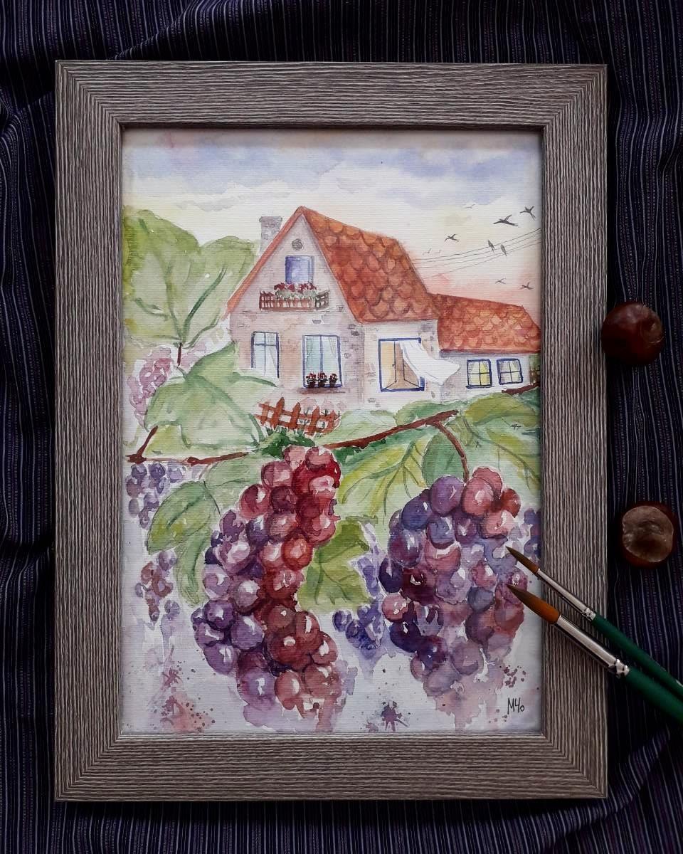 Grape harvest (FRM)
