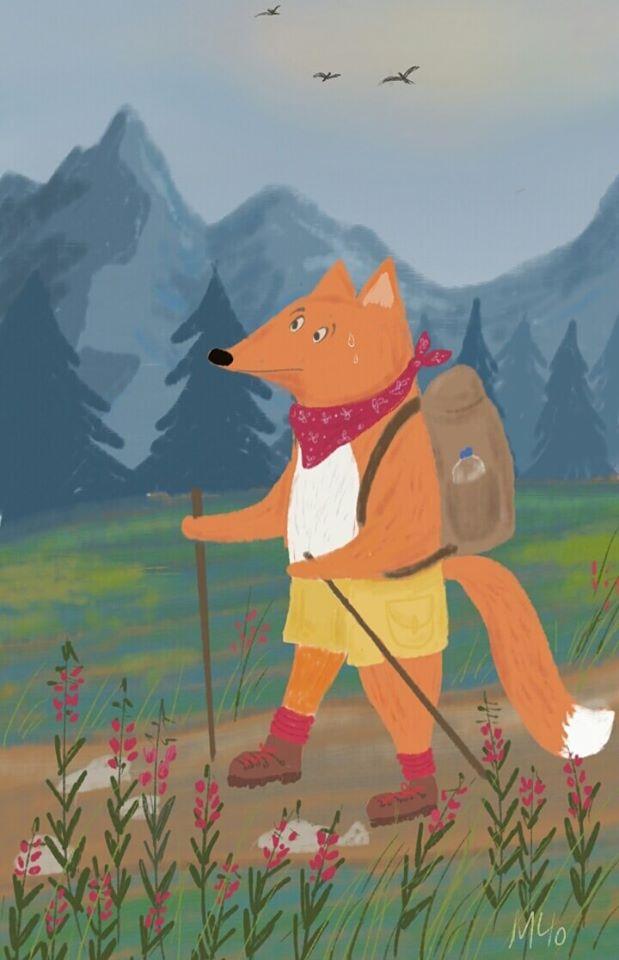 Fox hiker