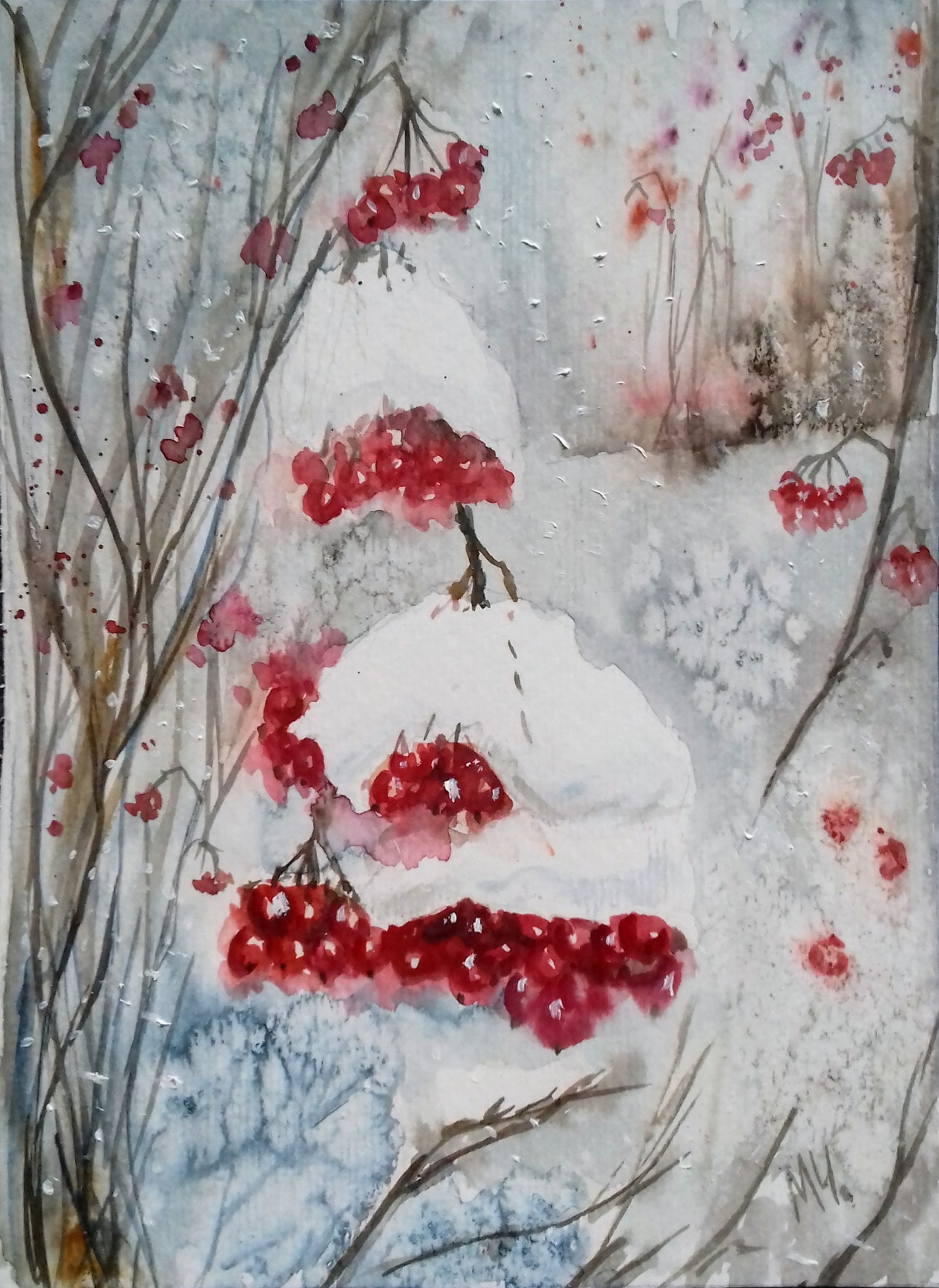 Snowy red viburnum